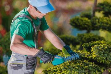 Como cuidar melhor das áreas verdes do condomínio